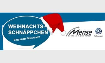 Foto des Serviceangebots Anzeige: Weihnachtsschnäppchen - begrenzte Stückzahl!