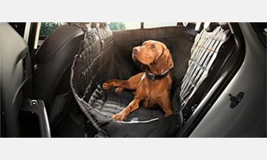 Foto des Zubehörangebots 10% Rabatt auf original Audi Zubehör für Ihren Hund
