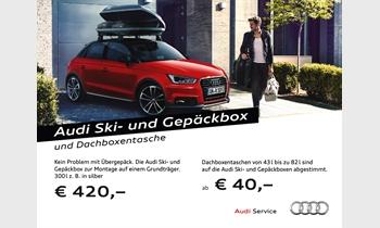 Foto des Zubehörangebots Audi Ski- und Gepäckbox